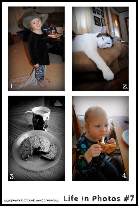 Life In Photos #7