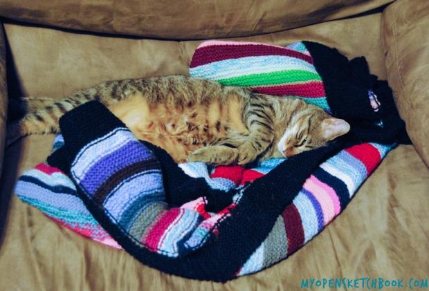 eli snuggled
