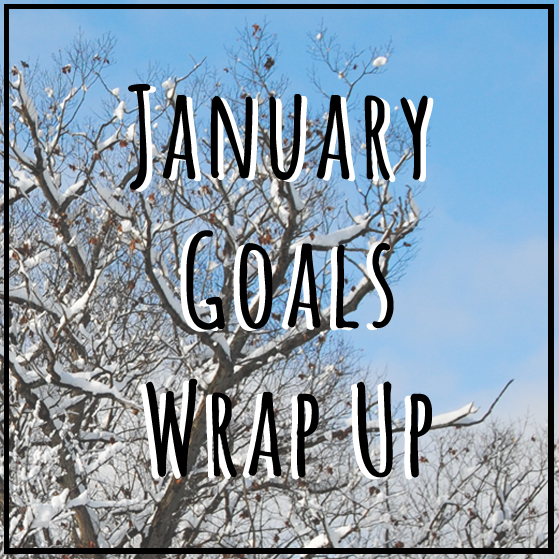 january goals wrap up